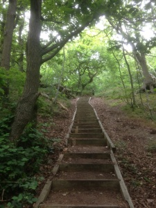 steps 3